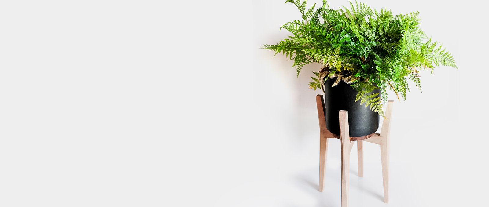 Plant Pot Stand 1